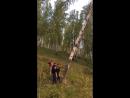 Срубить дерево и оставить его 🤦♀️