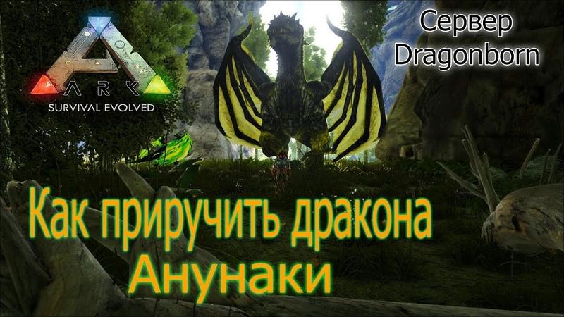 ANNUNAKI Как приручить ДРАКОНА в АРК Dragonborn x100