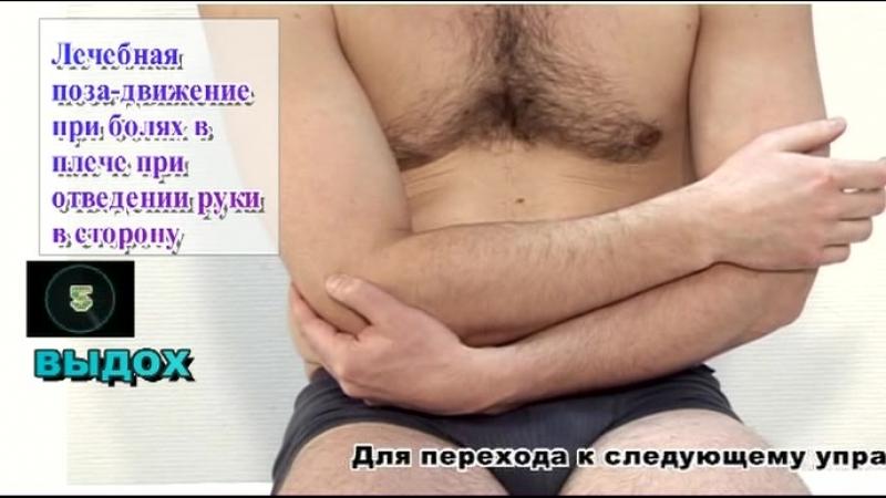 1. Руки и плечевой пояс