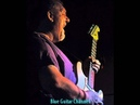 Dr Hector The Groove Injectors Safe In Your Arms Again Blue Guitar Channel