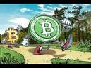 Криптовалюта Bitcoin Cash что представляет и зачем создали