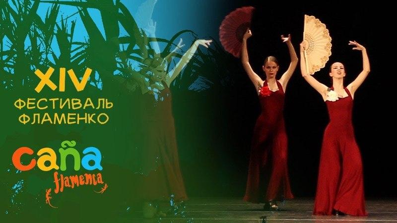 Студия «La Vela» / Alegrias