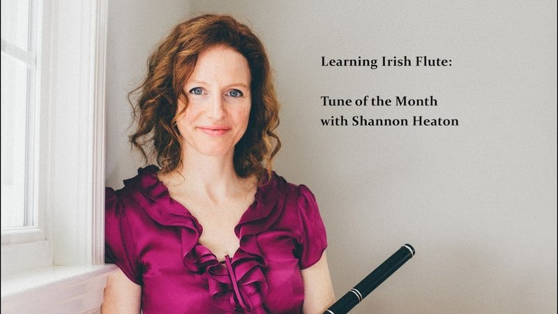Learning Irish Flute - Tune of the Month with Shannon Heaton - Toss the Feathers [Reel]