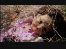 Замер ЗРАК црвених цветова дети хоронят кота