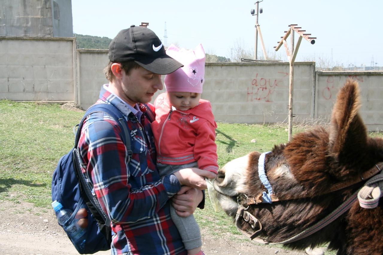 Детям уже с двух лет нравится кормить животных. Научить этому надо сразу правильно. Все действия проговаривать по порядку.