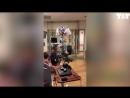 Американский кардиолог превратился в Чубакку ради юного пациента