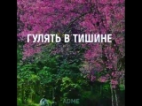 VID_64600522_073942_107.mp4