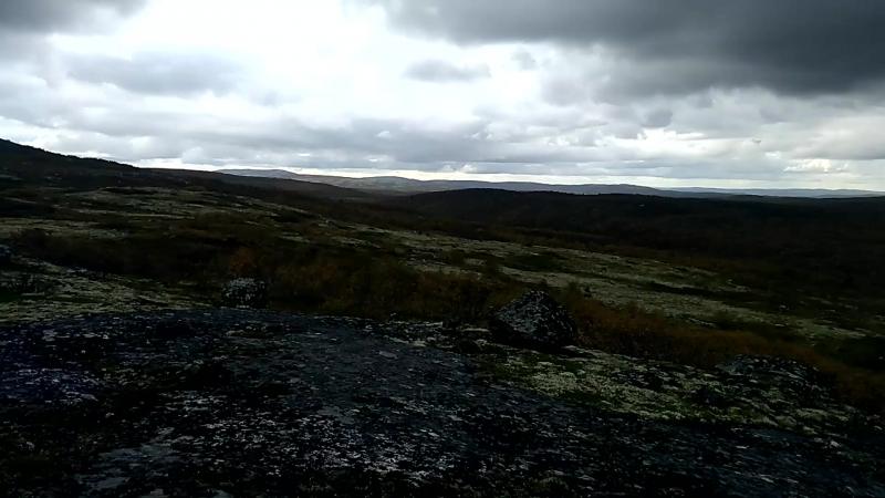 07 .09.2018 года, у озера, на сопке, по дороге Серебрянка г. Мурманск , прогулка за грибами...