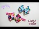 Mini Laço Exotico - Roberta Liliane