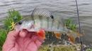 Нарезка с разных выездов не всегда рыбных Чтобы не спрашивали почему у тебя всегда клюет