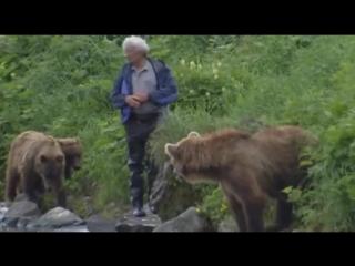 BBC. Natural World. The Bear Man of Kamchatka (2006)