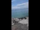 20180618_104005 утки на озере гарда