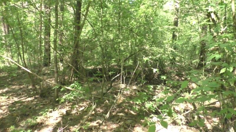 Сморгонь. Лес-8 (Дискордия). Первая траншея по сев. краю леса . Часть 2