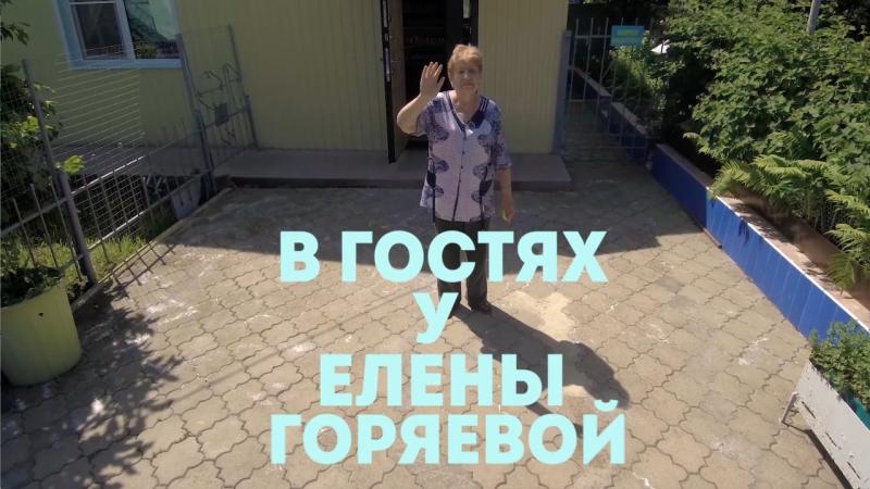 Елена Александровна Горяева о морознике