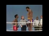 Sammy Davis Jr. vs. Wilt Chamberlain Rowan &amp Martin's Laugh-In George Schlatter