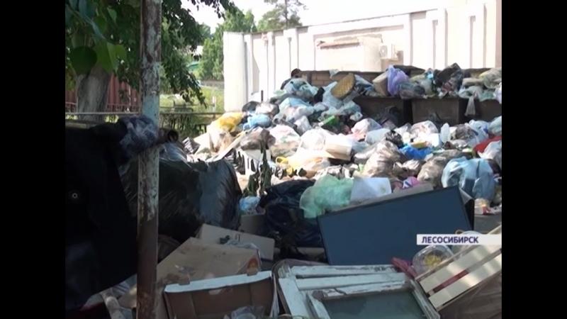Лесосибирцы жалуются на мусорный коллапс из-за долгов за коммунальные услуги