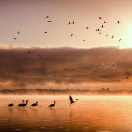 Lago альбом Lago