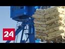 Корабль рефрижератор прошел по Севморпути из Владивостока в Архангельск доставили лосося Россия…