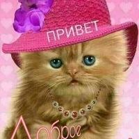 Анкета Василий Гардер