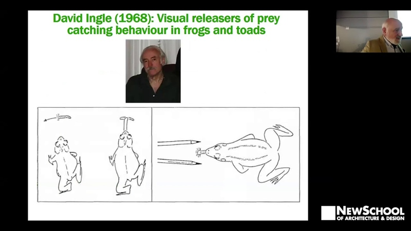 Lecture Series Michael Arbib | From Frogs' Brains to the Drawing of Buildings