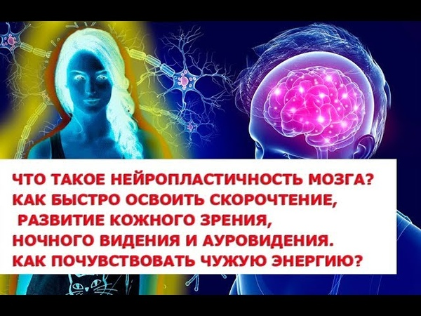 Что такое нейропластичность мозга Скорочтение, развитие кожного зрения, ночного видения и ауровидени