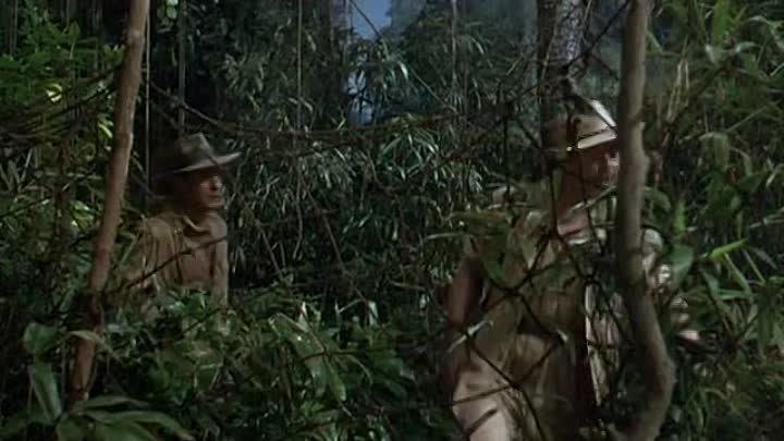 Могамбо. 1953. Кларк Гейбл. Грейс Келли. Ава Гарднер. Приключения Мелодрама| History Porn