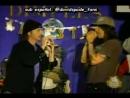 Anthony Kiedis in American Idol3