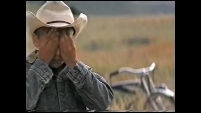 Фильмы о лошадях. Аманда (1996)