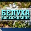 """Восхождение на Белуху Восточную с """"Триконя"""" 2019"""