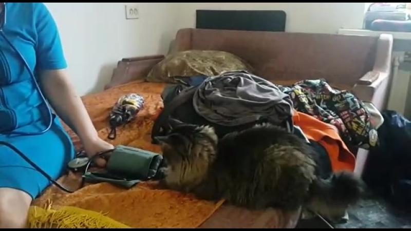 Мартин измеряет давление))
