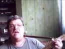 АХ ЭТИ ТУЧИ В ГОЛУБОМ исп А Лебедев диск № 17