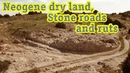 The global network of Neogene roads: Neogene land and petrified roads and ruts