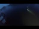 Паша 16 июня 2018, Артыбаш, треня с ГКС в ночи