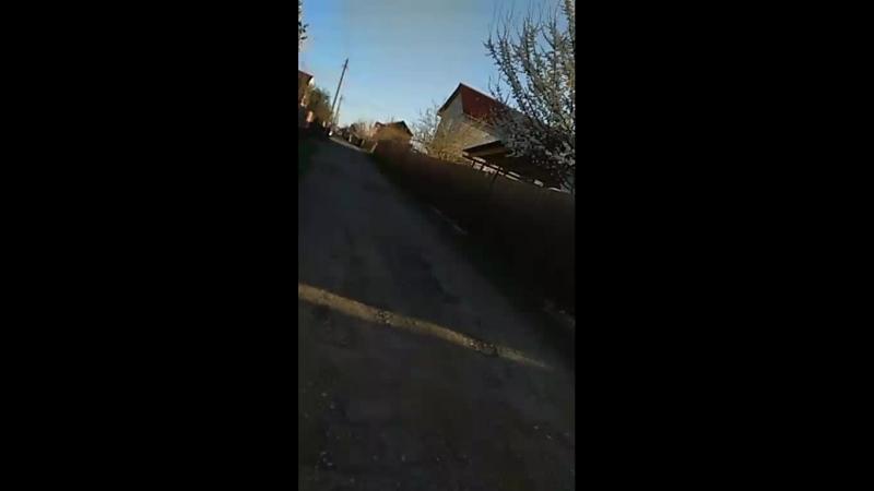 Андрей Клевцов - Live