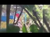 Воспитатель детсада в Хабаровске бьет детей