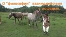 О философии взаимодействия с лошадью.