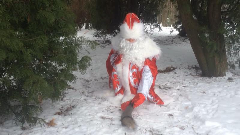 Дед Мороз в гостях у лесных жителей