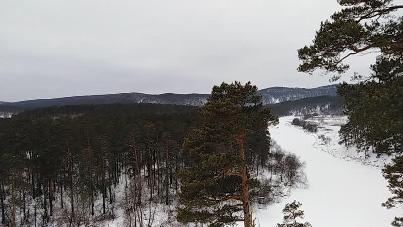 Кусинский лес Аргус