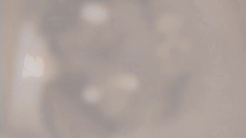 [v-s.mobi]Лара Фабиан Je T`Aime (Люблю тебя).mp4.mp4