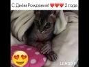 У котика днюха! Я люблю его очень сильно!💋💋❤️❤️
