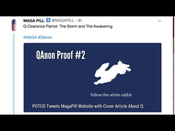 QAnon Proof 2 POTUS Tweets MagaPill Website with Cover Article About Q 11 25 17