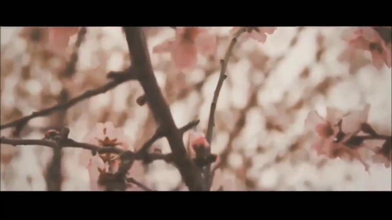 Шейх Шамиль Аш-Шишани- про Хиджаб HD