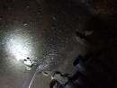 НЕНАДЛЕЖАЩЕЕ СОДЕРЖАНИЕ дома УПРАВЛЯЮЩЕЙ организацией ЯГРЫ г. Северодвинск. Дом №3 ул. Гоголя , ПОДВАЛ ПЕРВОГО ПОДЪЕЗДА.