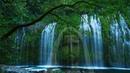 2 Horas de Paz con Jesús Melodía con Sonidos Naturales Dormir, Orar, Descansar