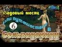 The Sims 4 Бедовый месяц или путешествие в Сельвадораду 6 серия -Голышом в купальне