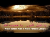 Ya_Habibal_Qolbi_Lirik_dan_Artinya___Lirik_Ya_Habibal_Qolbi___Arti_Terjemahnya,_.mp4