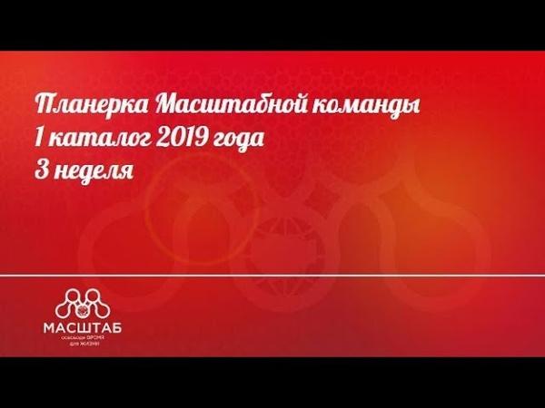 Планерка Масштаба 20.01 (от команды Интенсива)