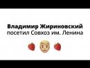 Жириновский выехал на природу в клубничный рай Павла Грудинина