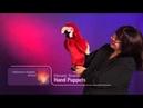 Folkmanis® Scarlet Macaw Puppet Demo