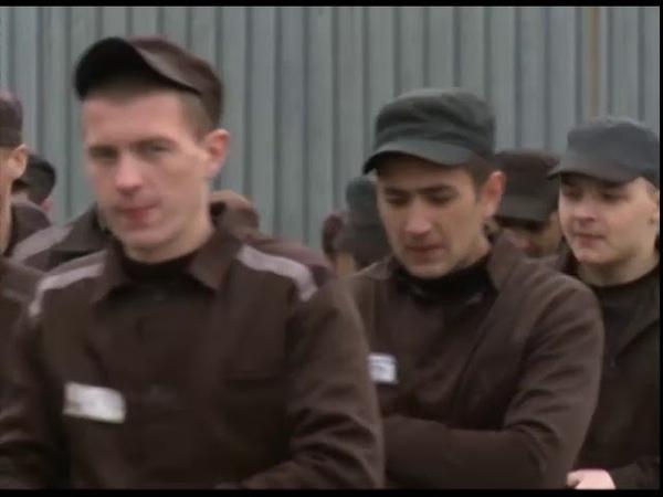 Следком проводит проверку по сообщению об избиении подследственного в Ярославской области